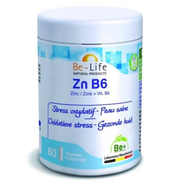 suplemento ZN-B6_60-GEL