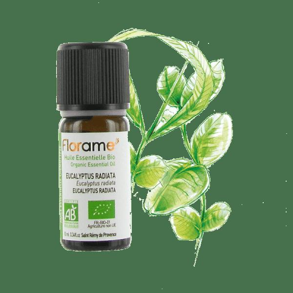 eucalyptus radiata 10ml florame